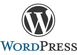 Expert Wordpress en Alsace - Agence de création & maintenance de site Internet sous wordpress